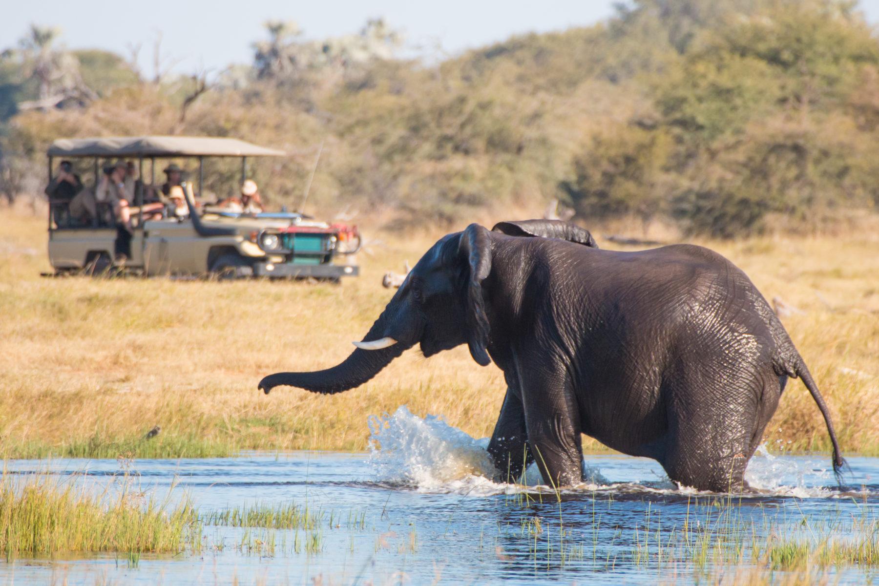 Desert & Delta empowering Botswana through tourism